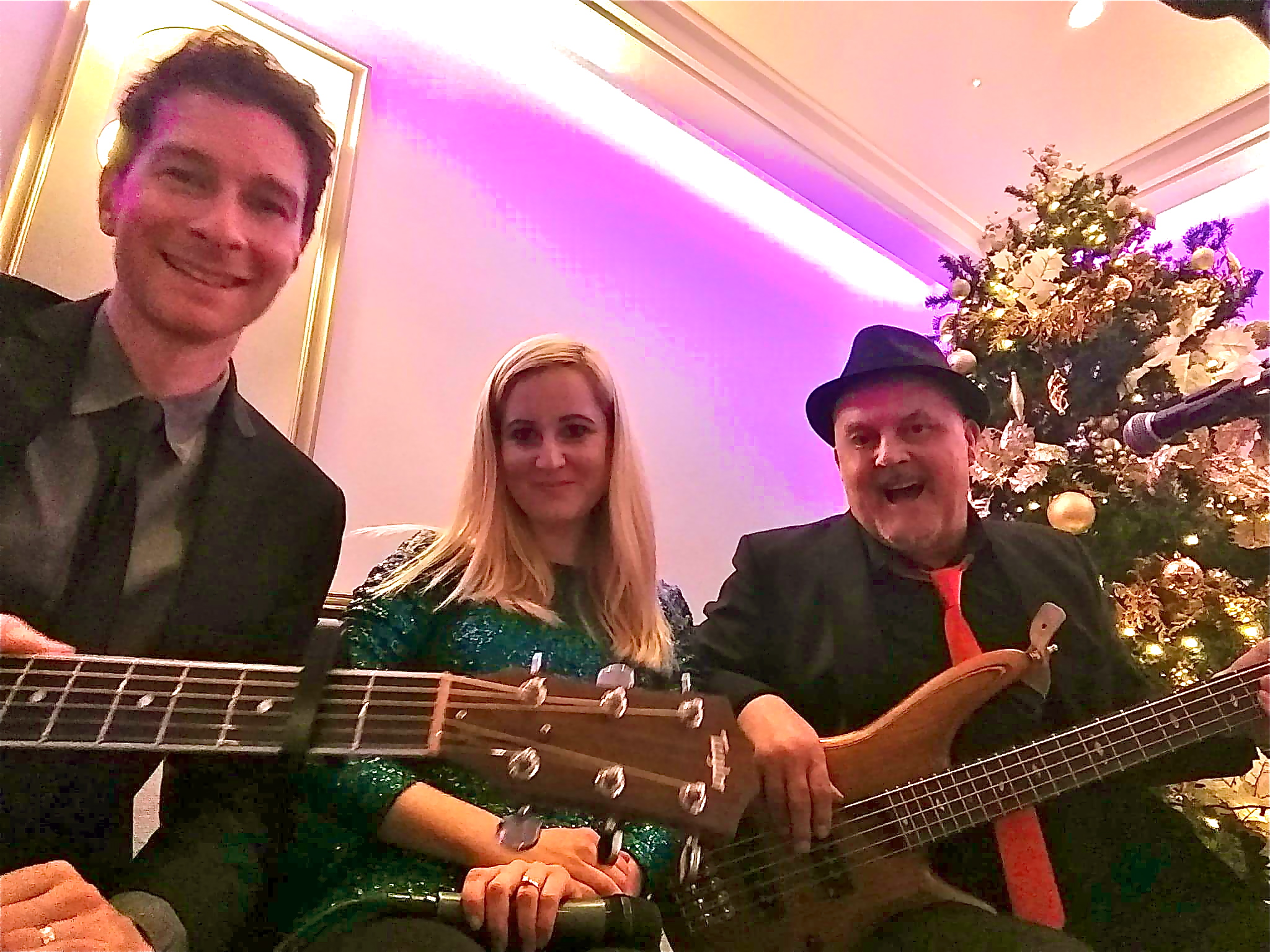 Taylormade Trio Christmas Party Band