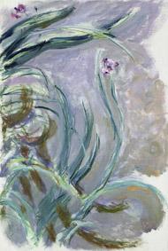 MMT 181500                                Iris, 1924-25 (oil on canvas)                                Monet, Claude (1840-1926)                                MUSEE MARMOTTAN MONET, PARIS, ,