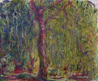 MMT 82312                                Weeping Willow, 1918-19 (oil on canvas)                                Monet, Claude (1840-1926)                                MUSEE MARMOTTAN MONET, PARIS, ,