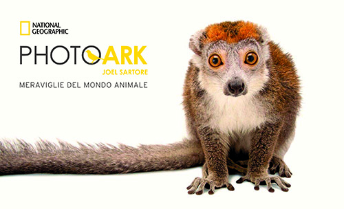 Photo Ark_LOGO+TITOLO_OUT_NEW