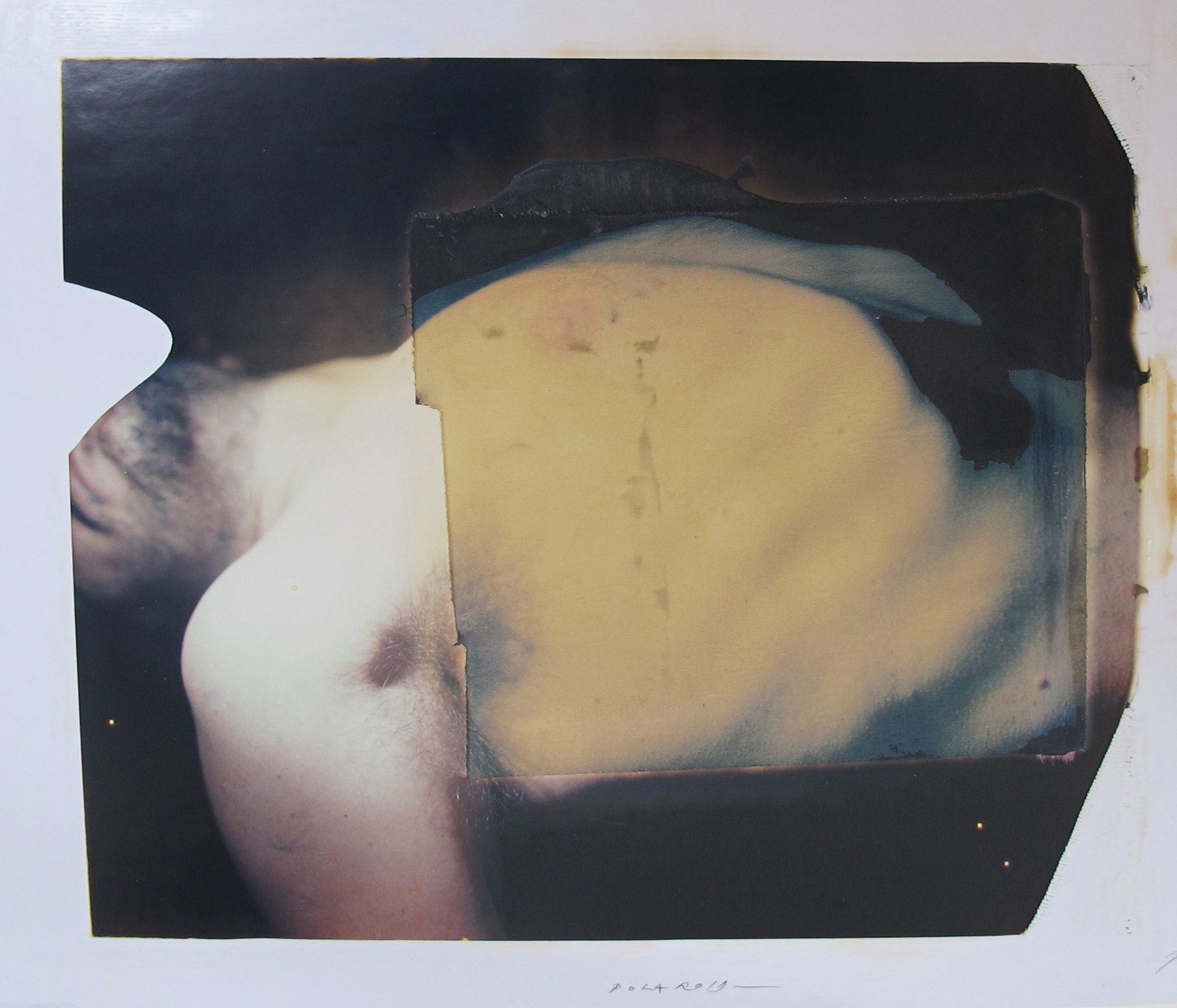 """Torace"" in mostra presso l'Accademia Americana"