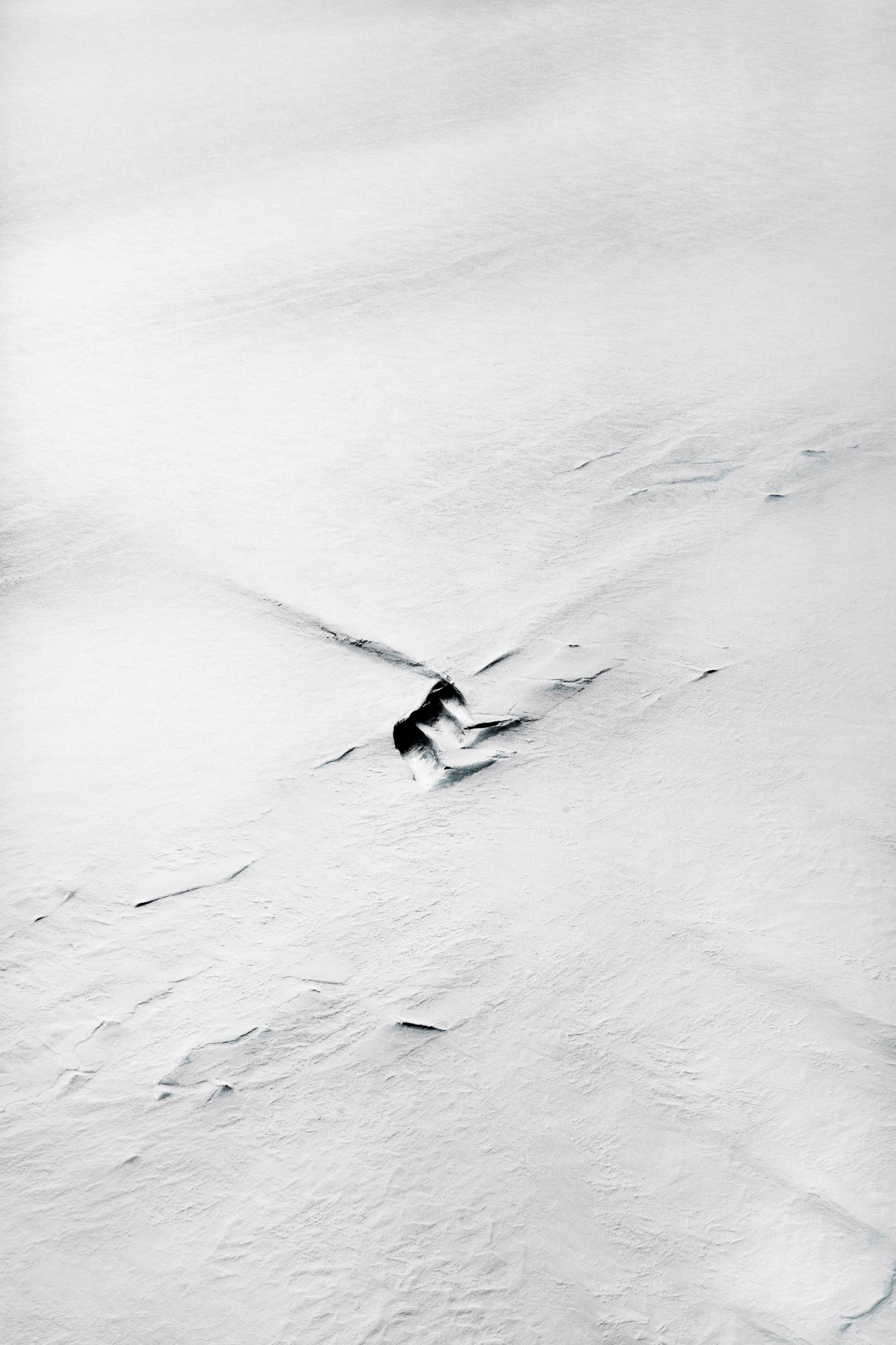 Antartide, 2017