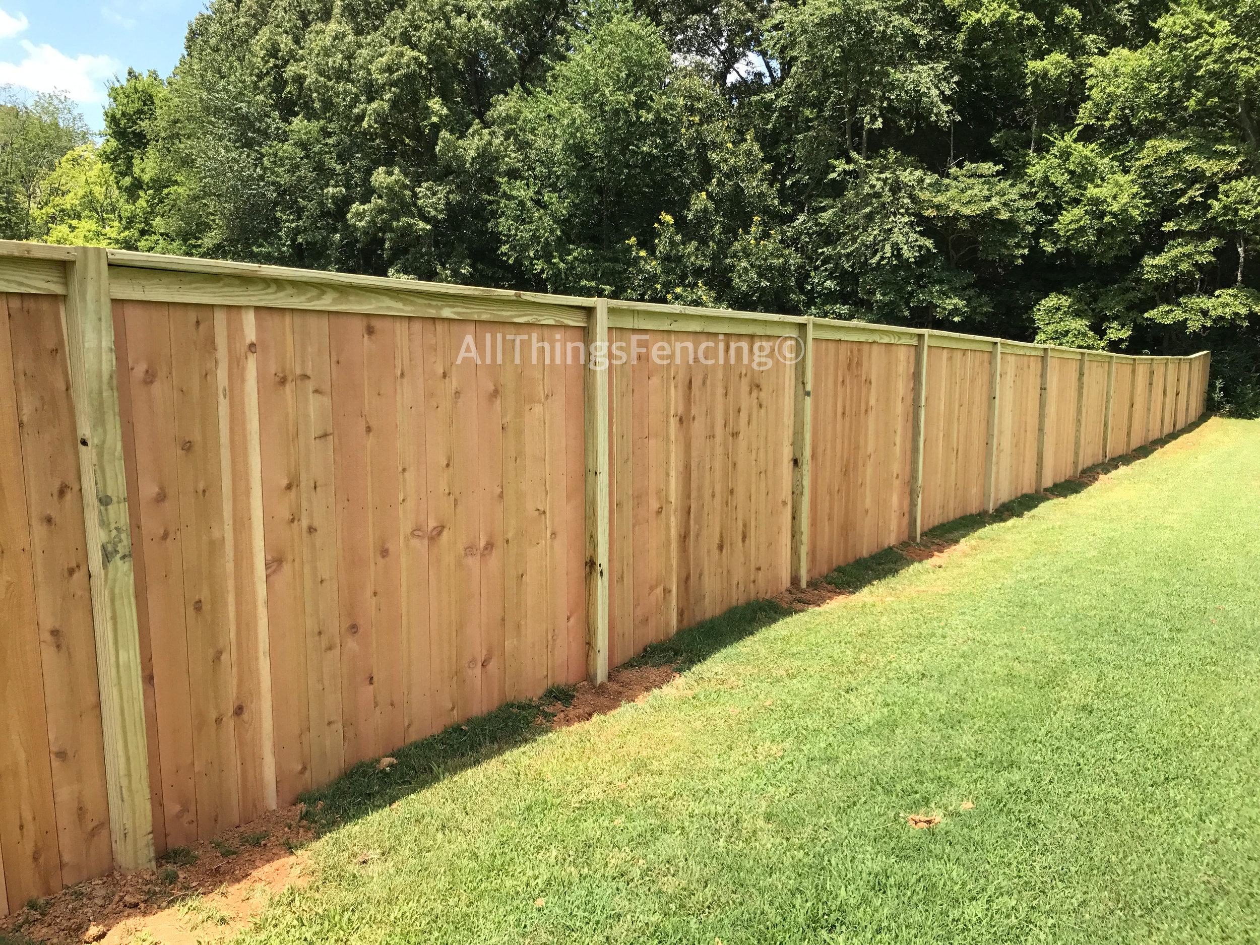 Fence31.jpg