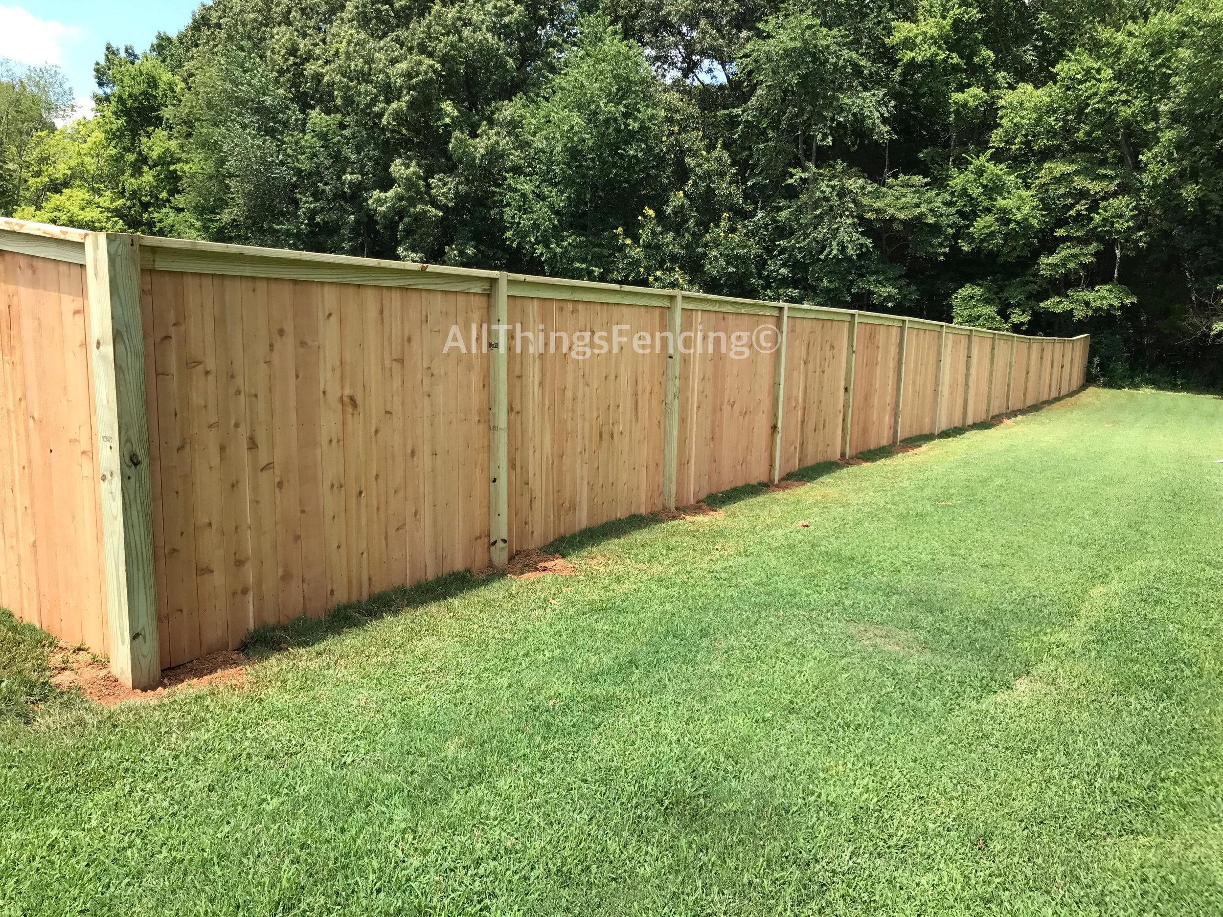 Fence29.jpg