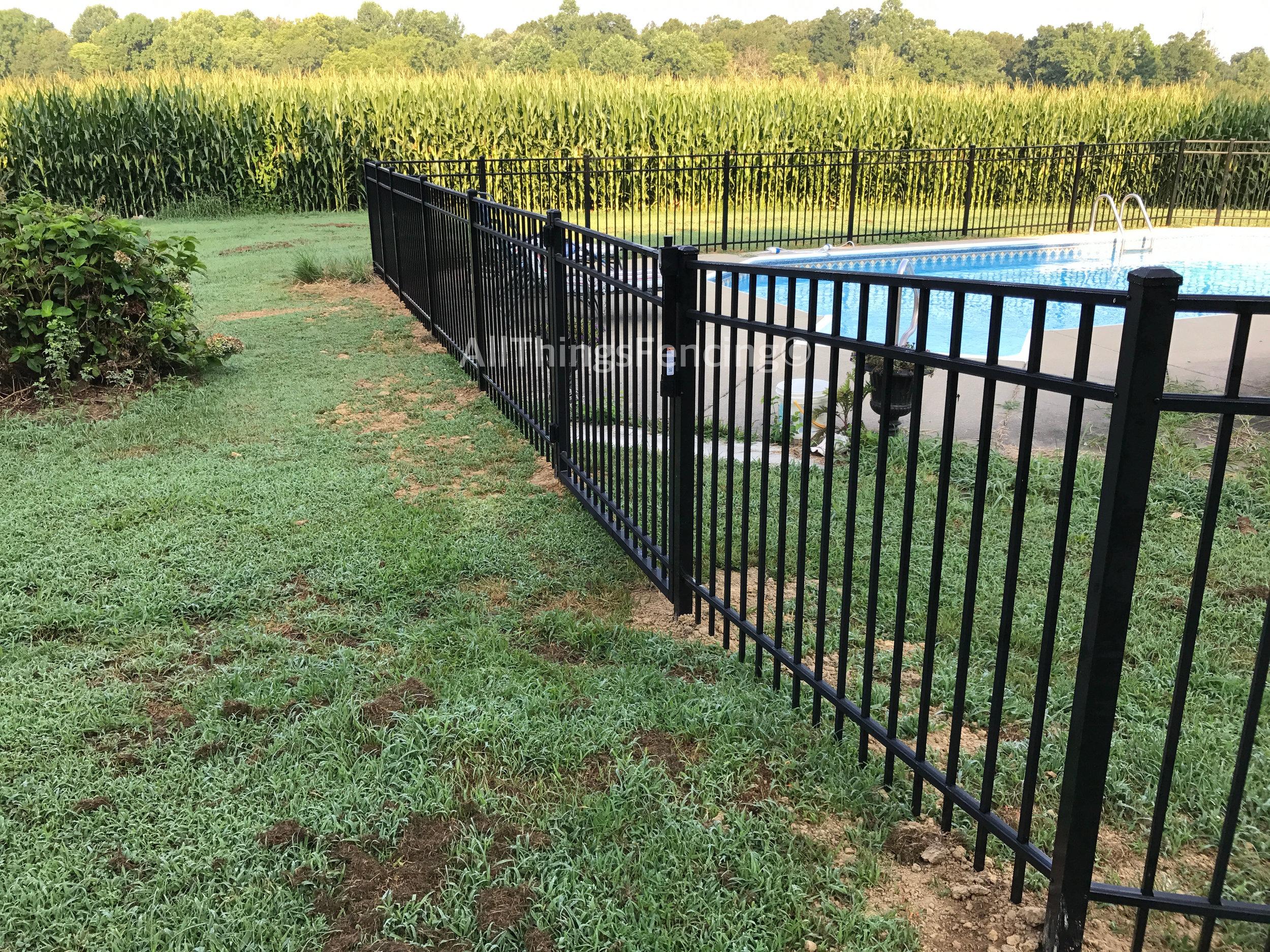 Fence20.jpg