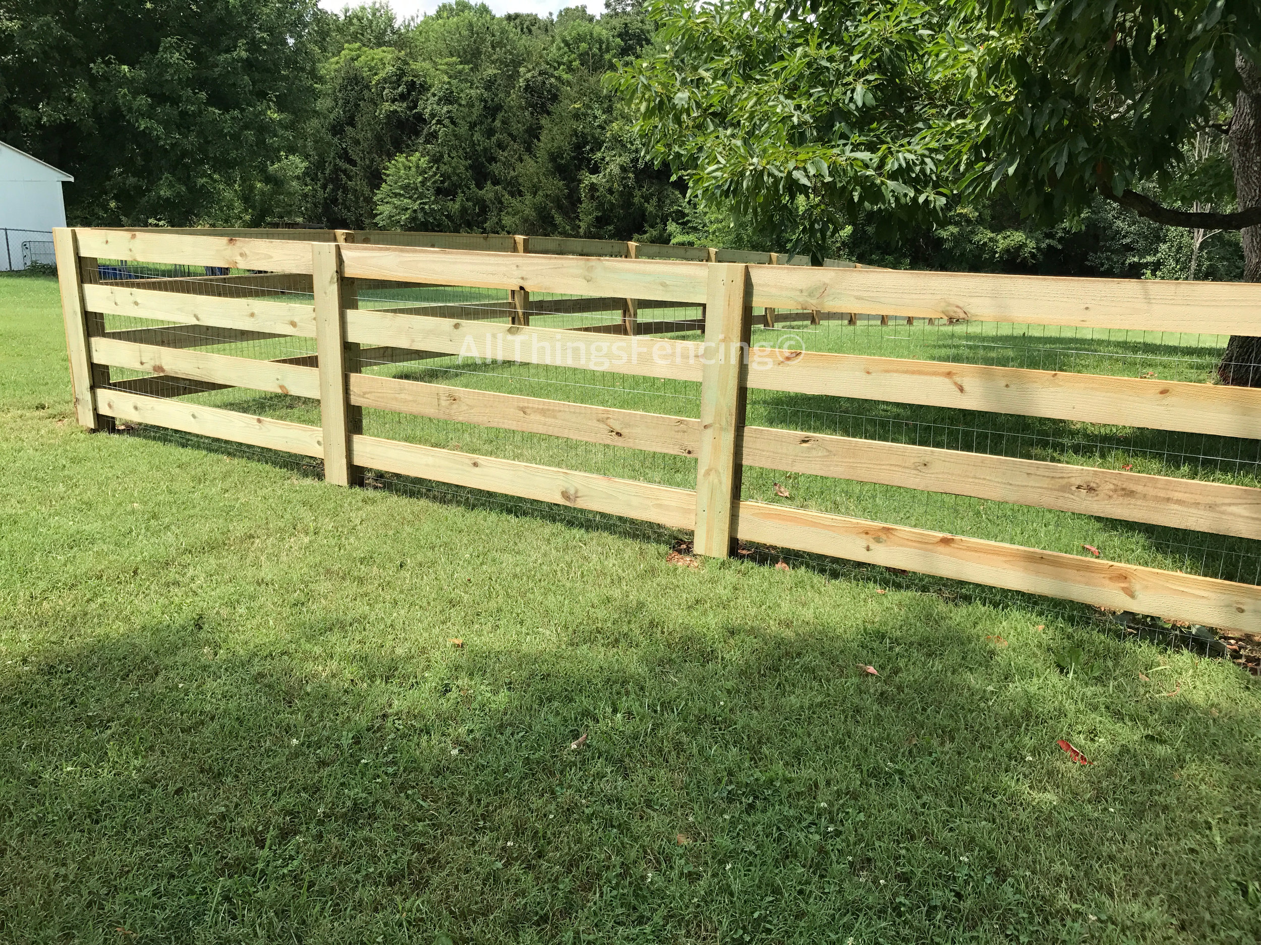 Fence14.jpg