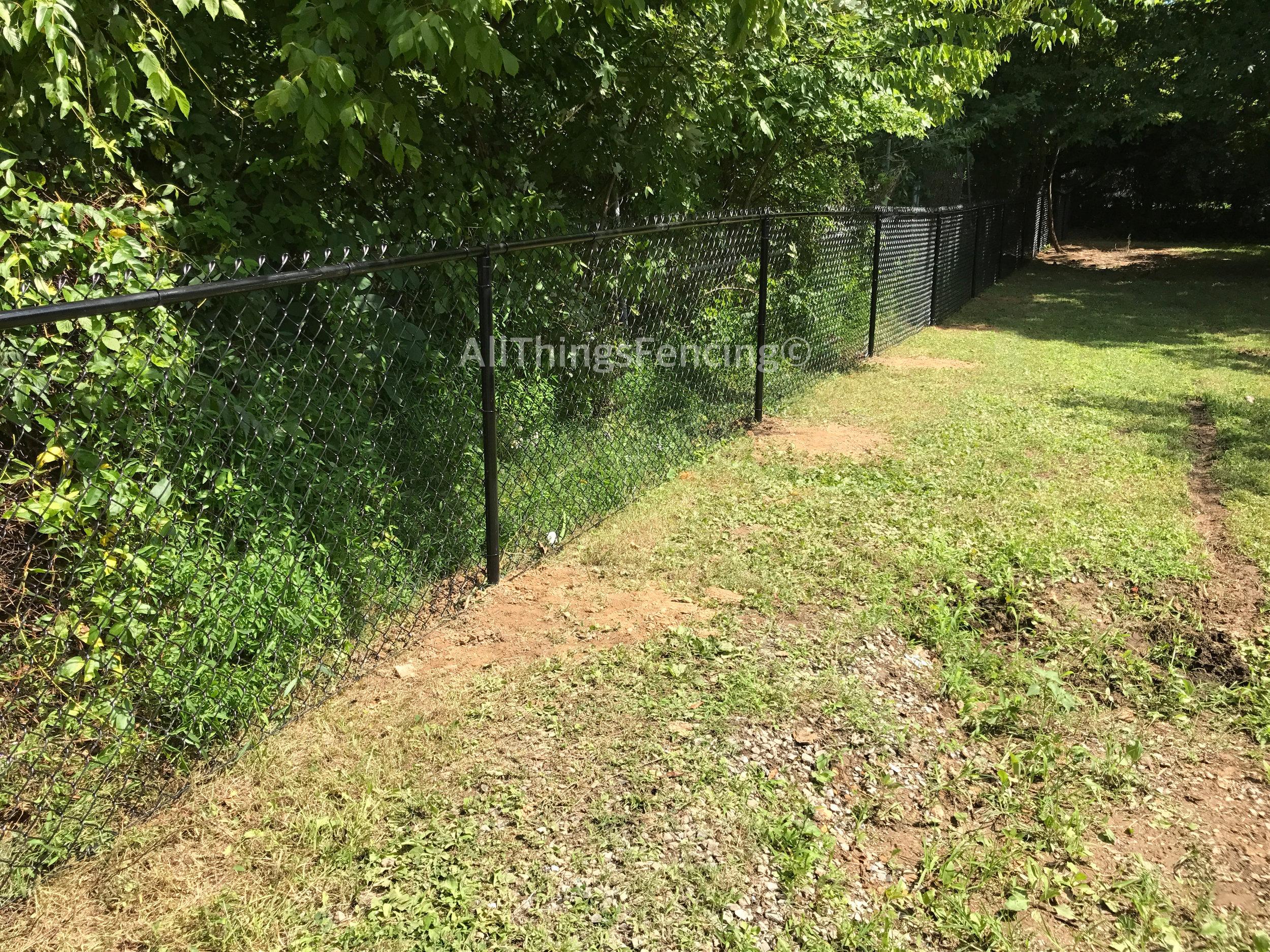 Fence9.jpg