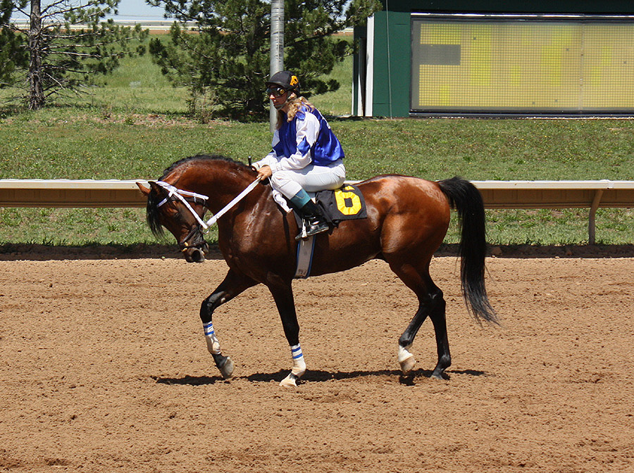 WA Maksimum returning from a race at Arapahoe Park.