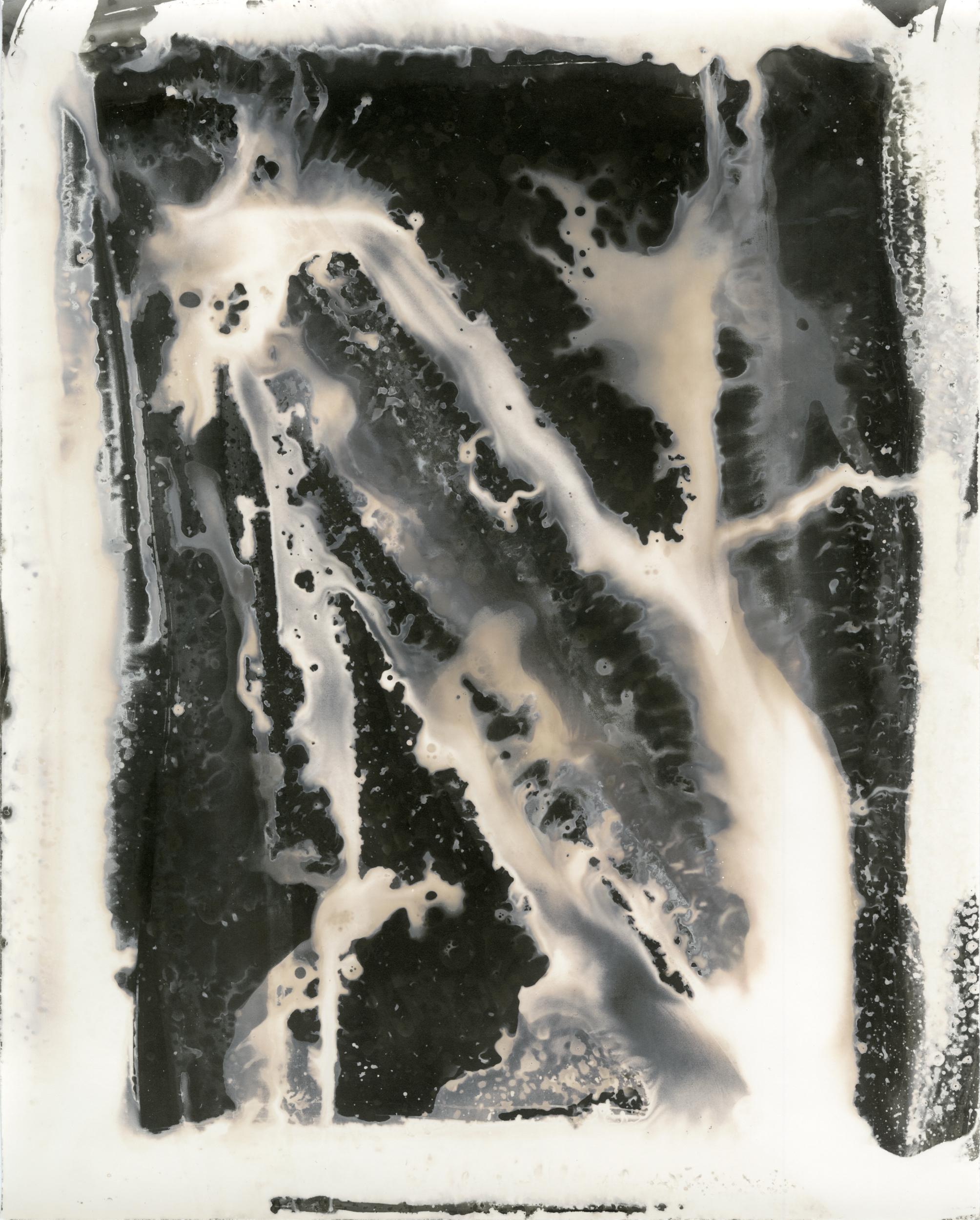 Chemigram #1 (N)
