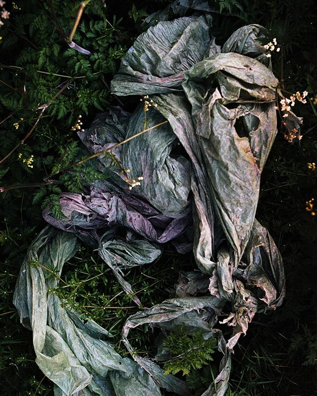 Plastic wraith