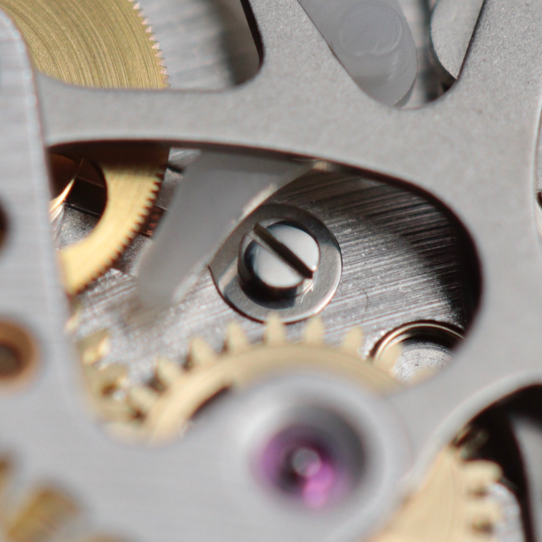 The central screw holds in placethe friction spring for the chronograph wheel, removing any slack between meshed teeth gears