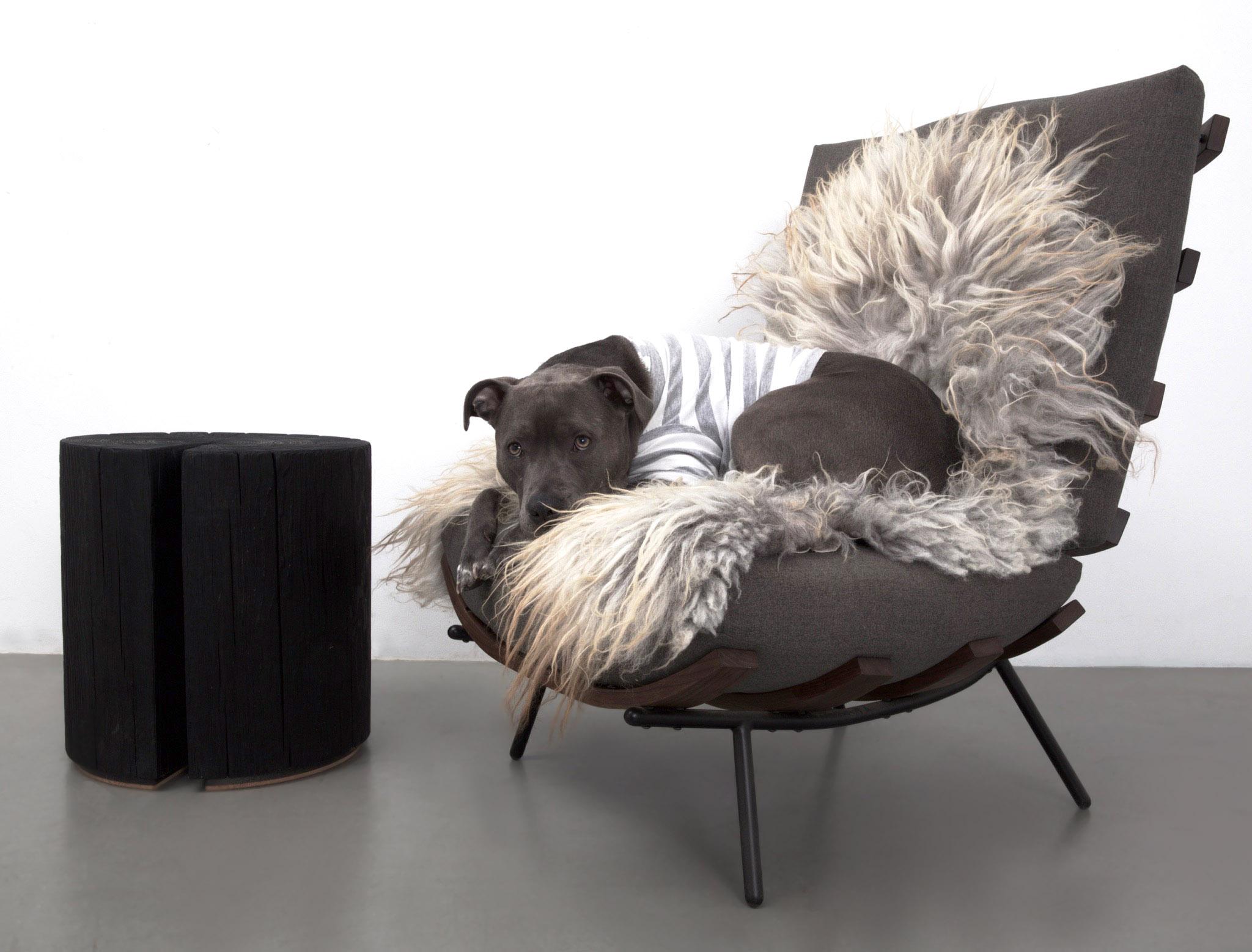 Rasta on UHURU Design's custom chair and Hono stool.
