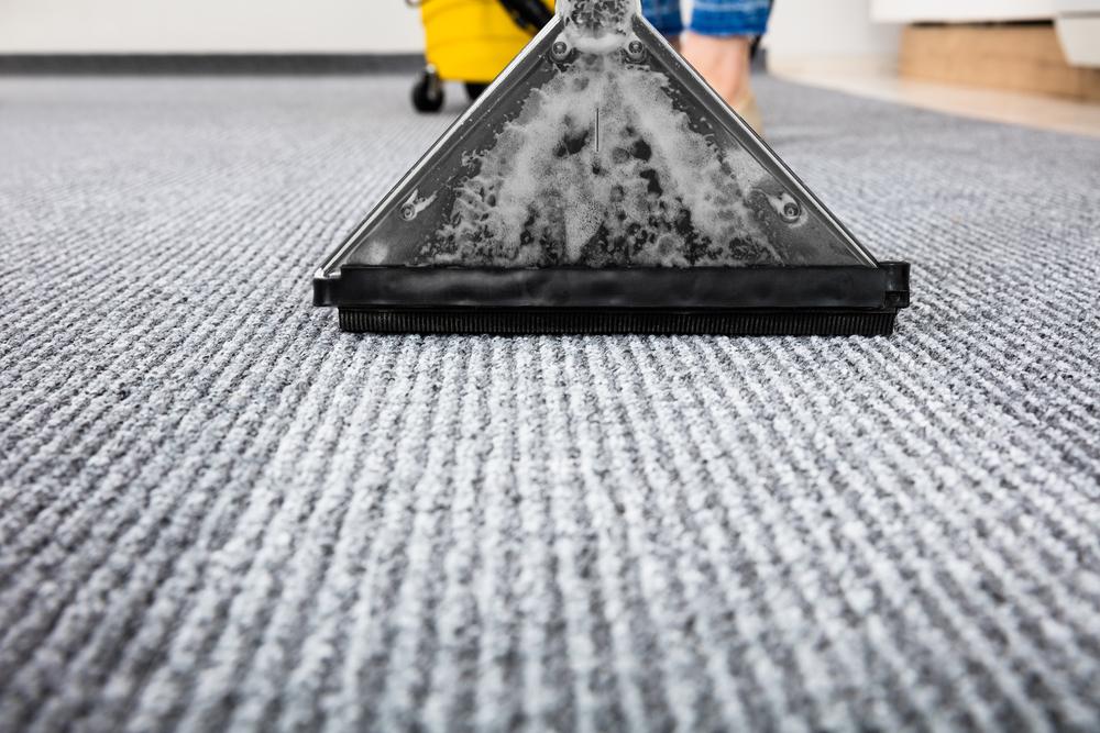 carpet-cleaner-shutterstock-license_576681667.jpg