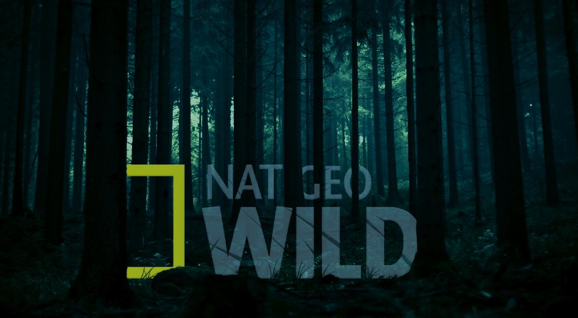 Nat Geo 1