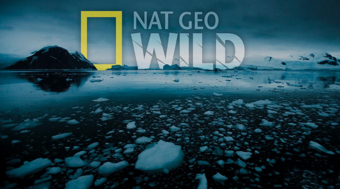 Nat Geo 2