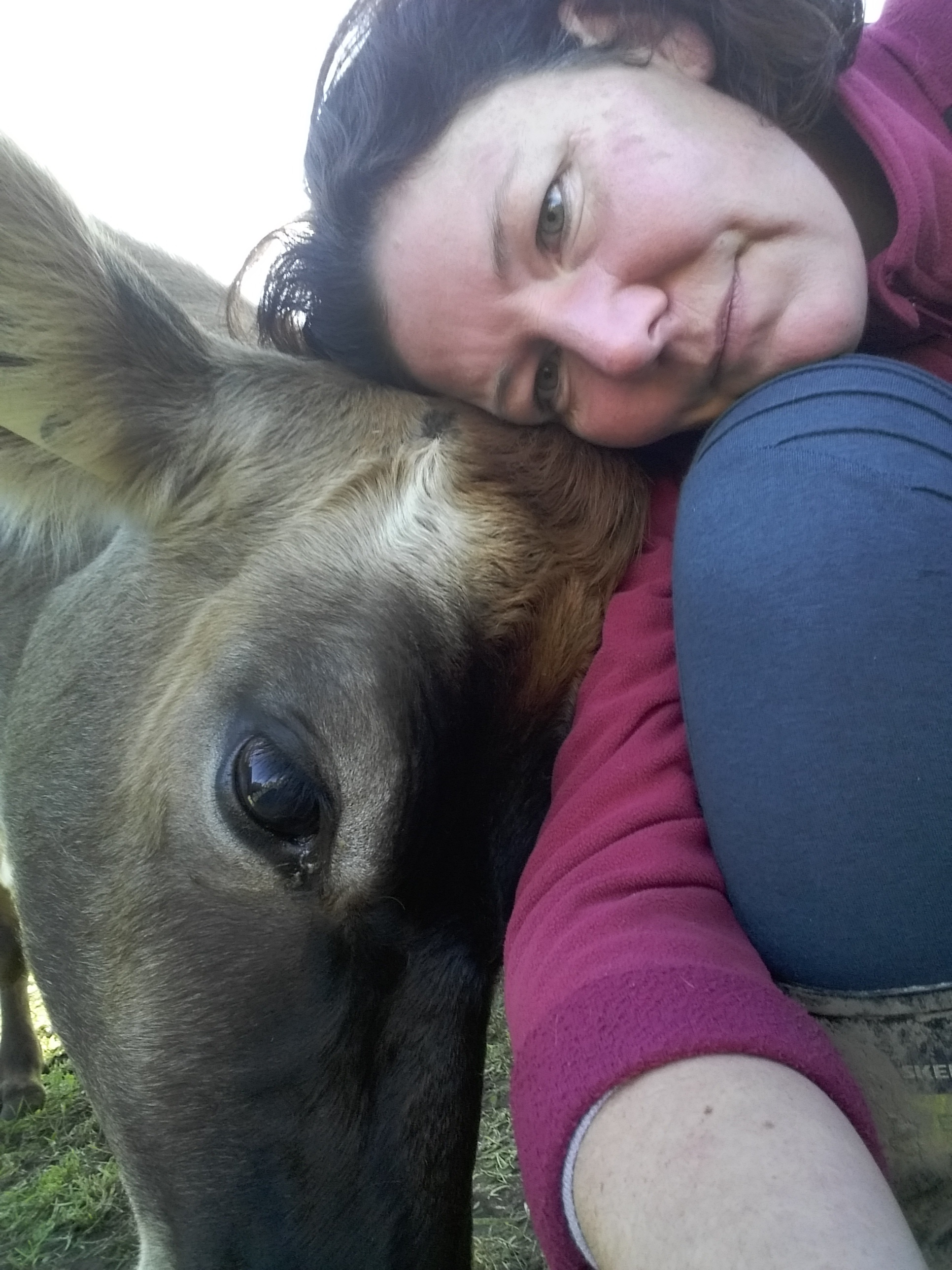 """""""The other half and I AI the cows ourselves which we love! Breeding is our passion."""""""
