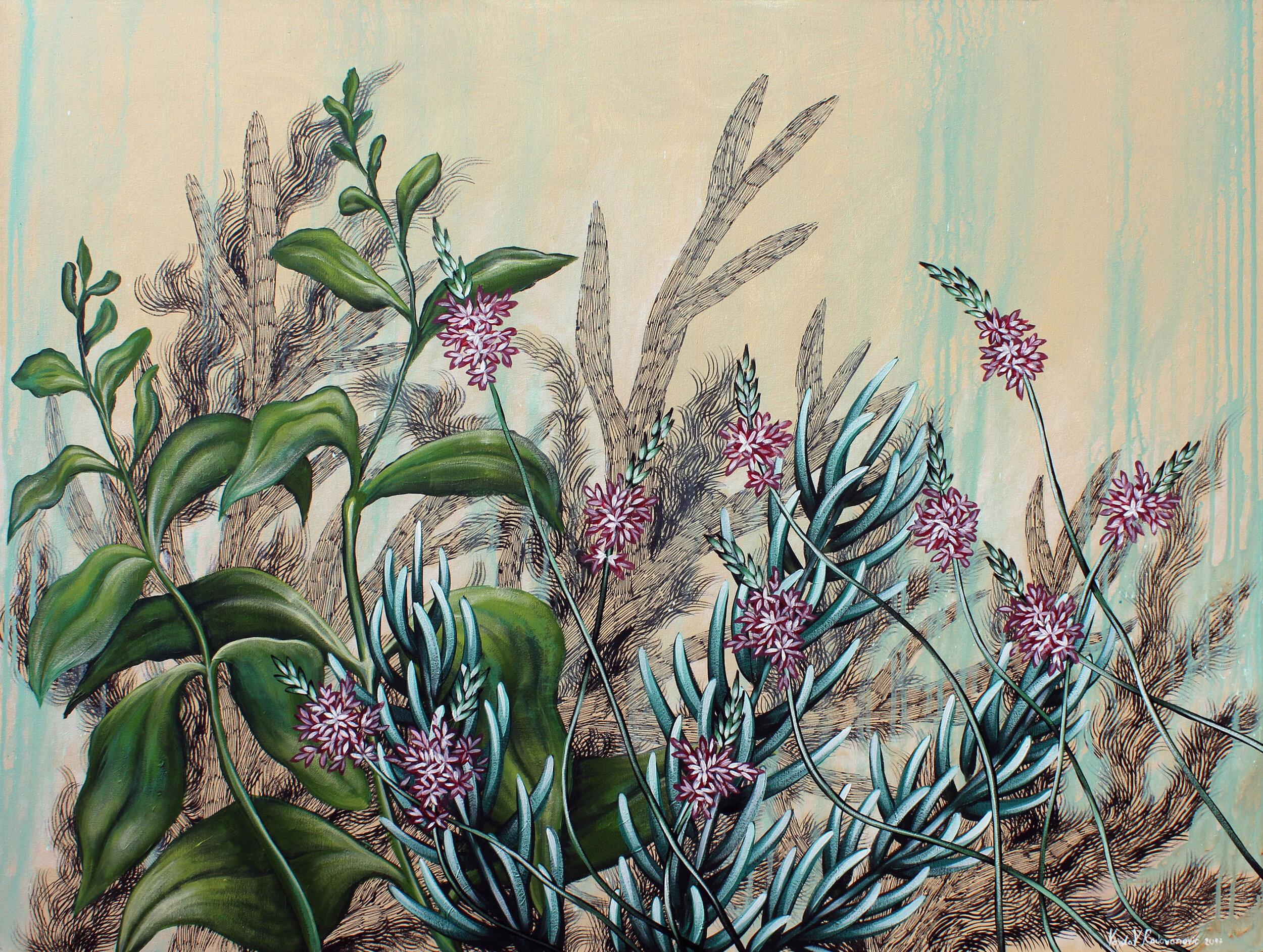Myor's Choice, Californian Weeds - Vojislav Radovanovic