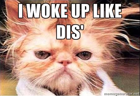 C-cat woke up like dis