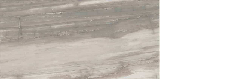 petrified wood 12x 24 gray natural and polished