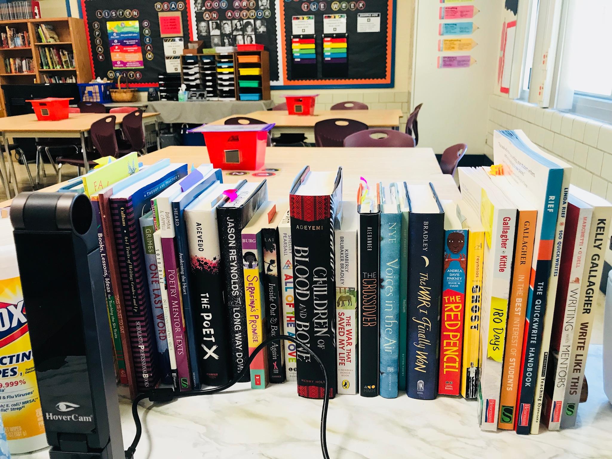 Mentor Text Teacher Books -