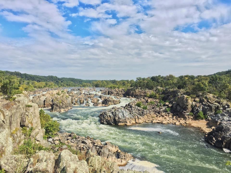 Our 4th and final day was spent at Great Falls Park. It was a little bit of a drive from where we were staying but it was so worth it. It was a great morning with breathtaking views.