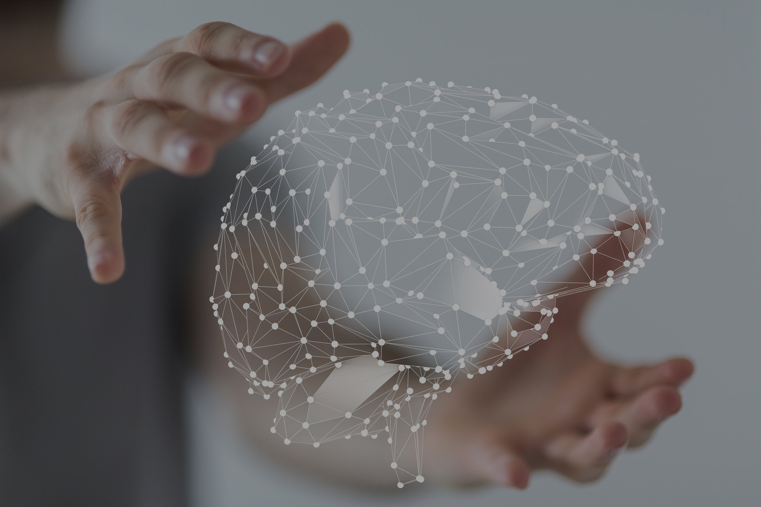 Machine Learning & Data Science - Identifying patterns for revenue growth, achieving operational efficiencies and reducing risks with our statistical and machine learning techniques.