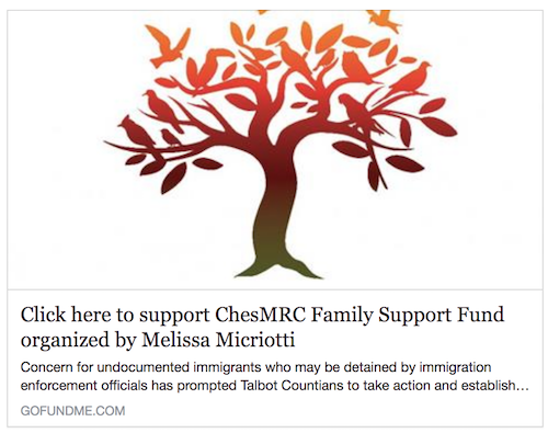 Chesapeake Multicultural Resource Center's Go Fund Me page, raising funds to help local immigrant families in crisis:  https://www.gofundme.com/chesmrc-family-support-fund