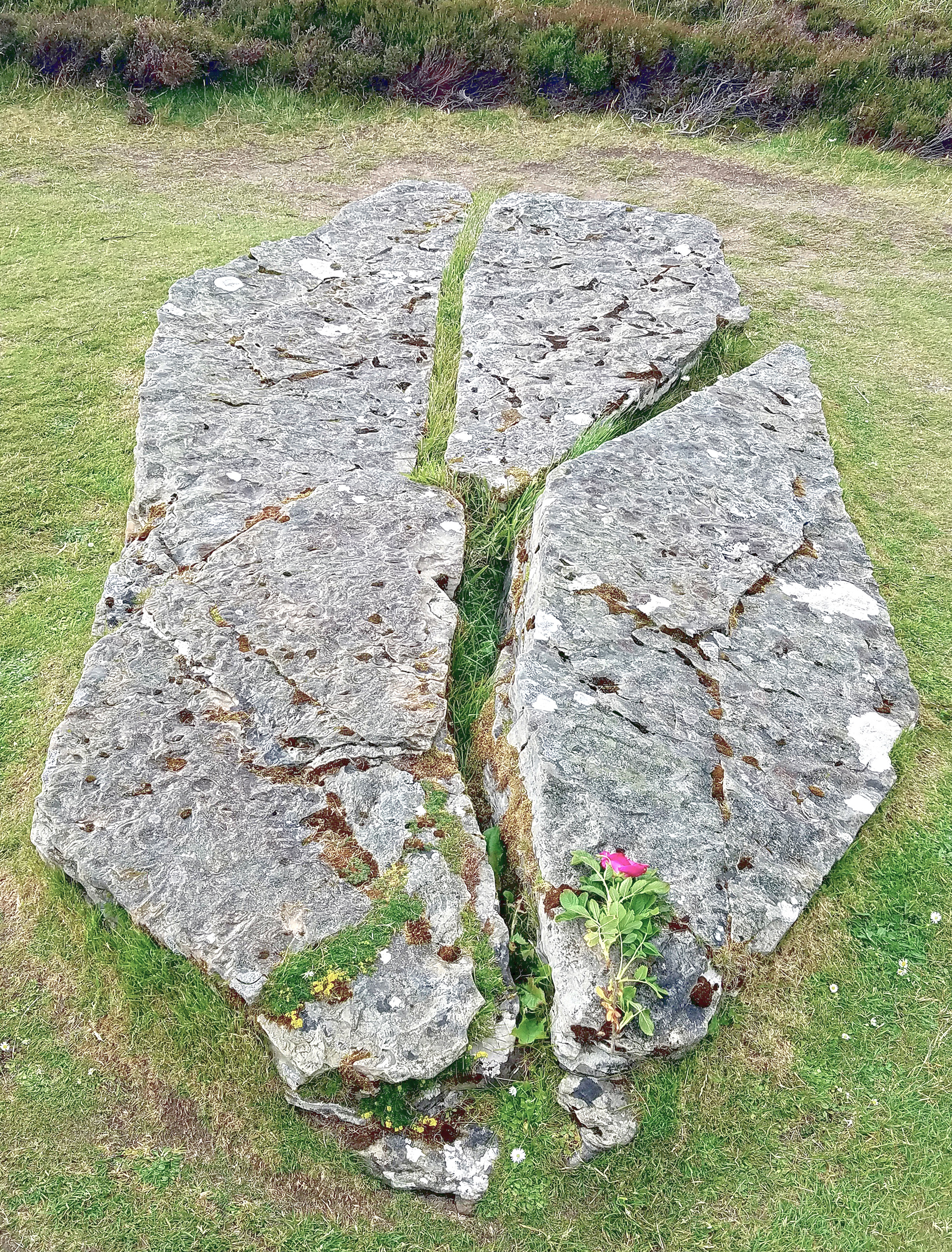 Fallen Standing Stone at the Ring of Brodgar