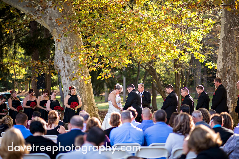 hillsdale_wedding_photographer_hillsdale_wedding_29.jpg