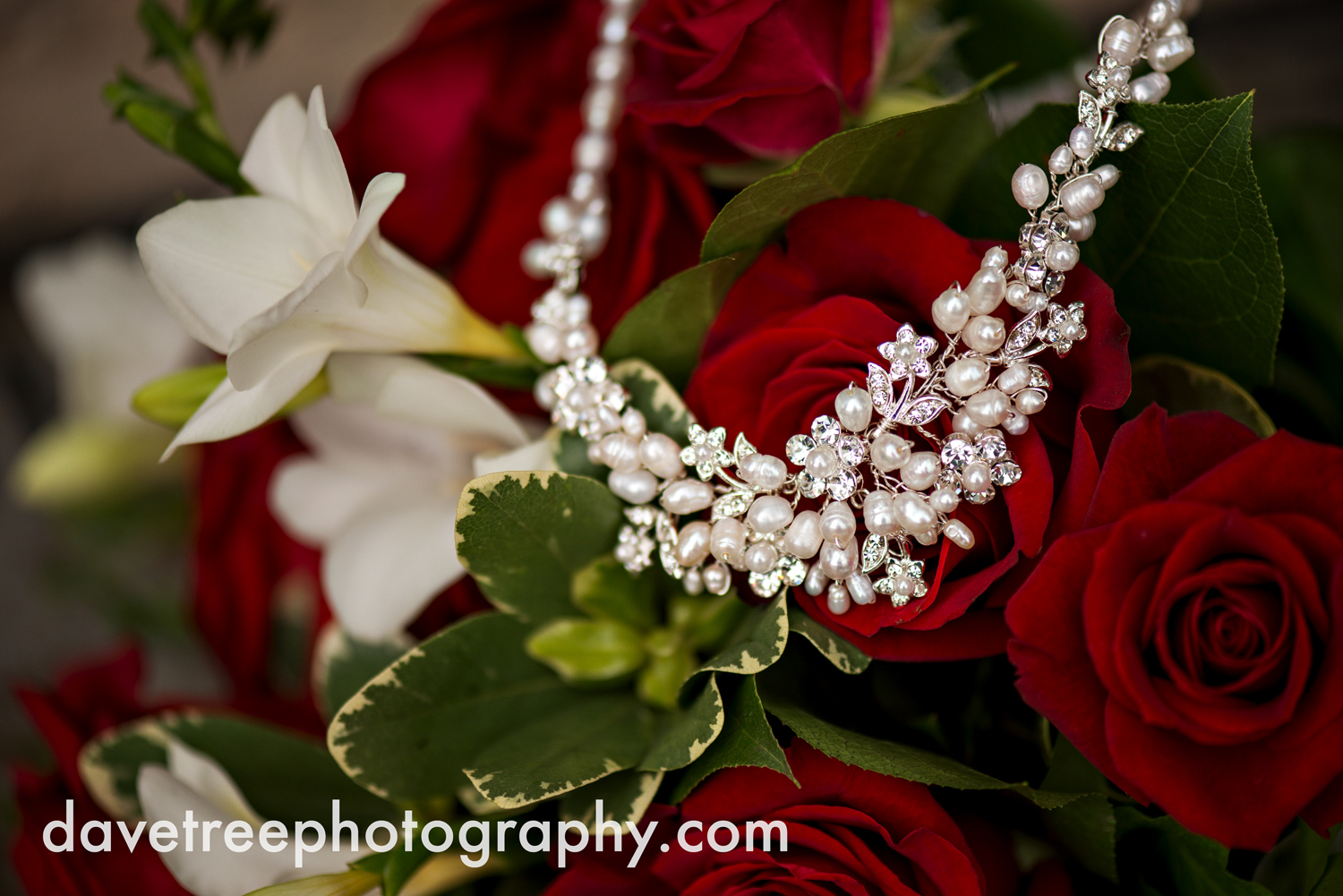 holland_wedding_photographer_45.jpg