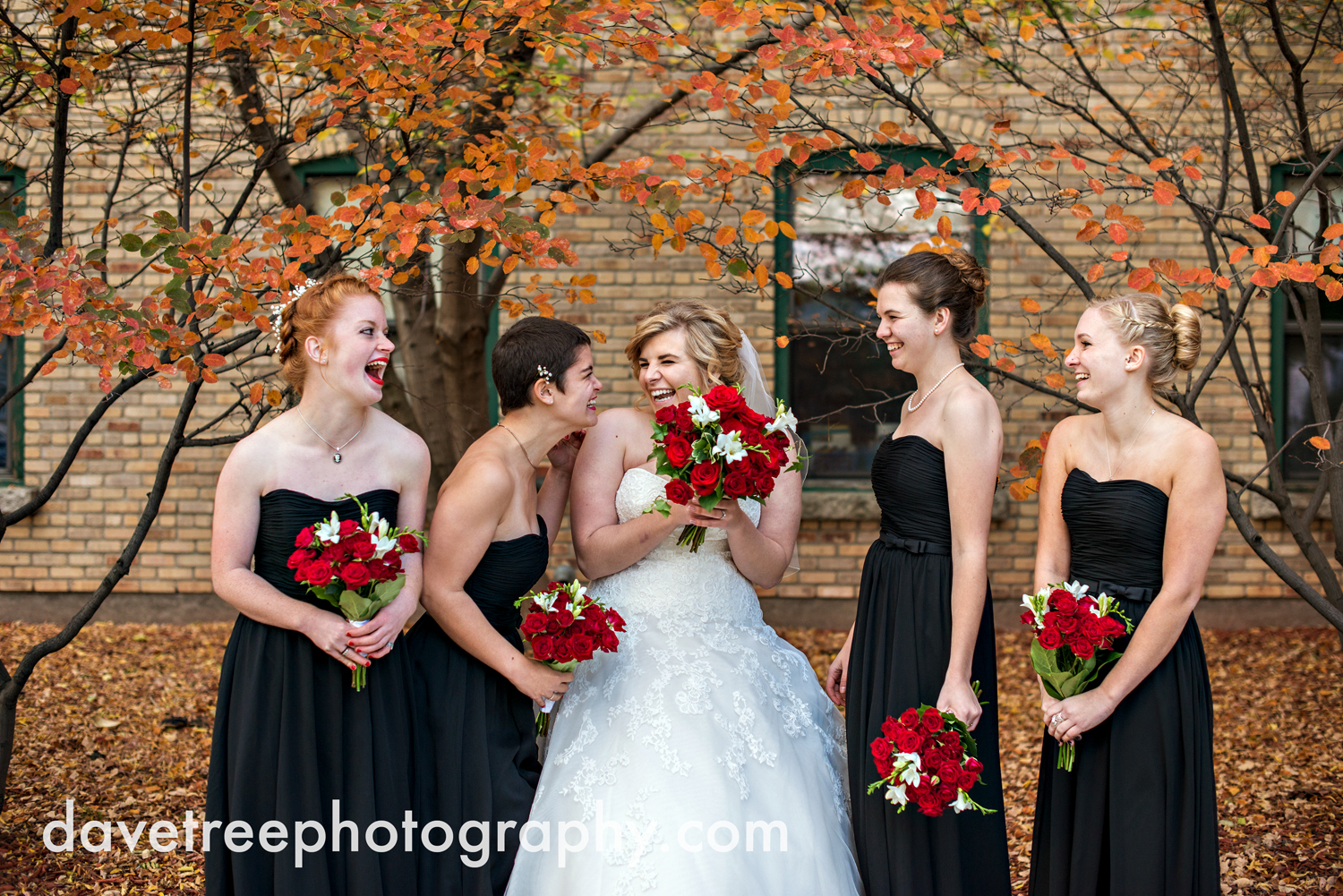 holland_wedding_photographer_56.jpg