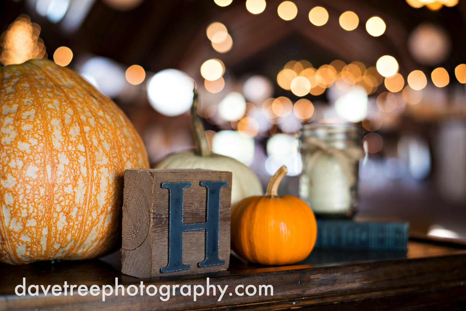 benton_harbor_wedding_photographer_blue_dress_barn_85.jpg