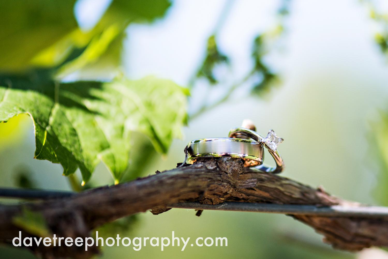 michigan_vineyard_wedding_photographer_davetree_photography_388.jpg