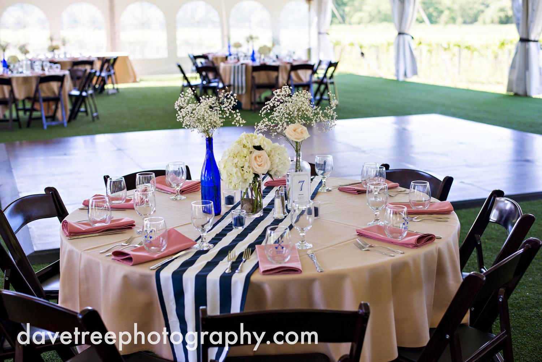 michigan_vineyard_wedding_photographer_davetree_photography_394.jpg