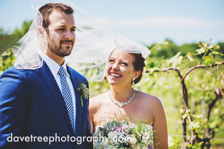 michigan_vineyard_wedding_photographer_davetree_photography_315.jpg