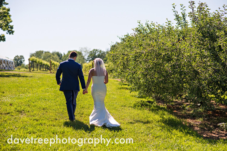 michigan_vineyard_wedding_photographer_davetree_photography_370.jpg