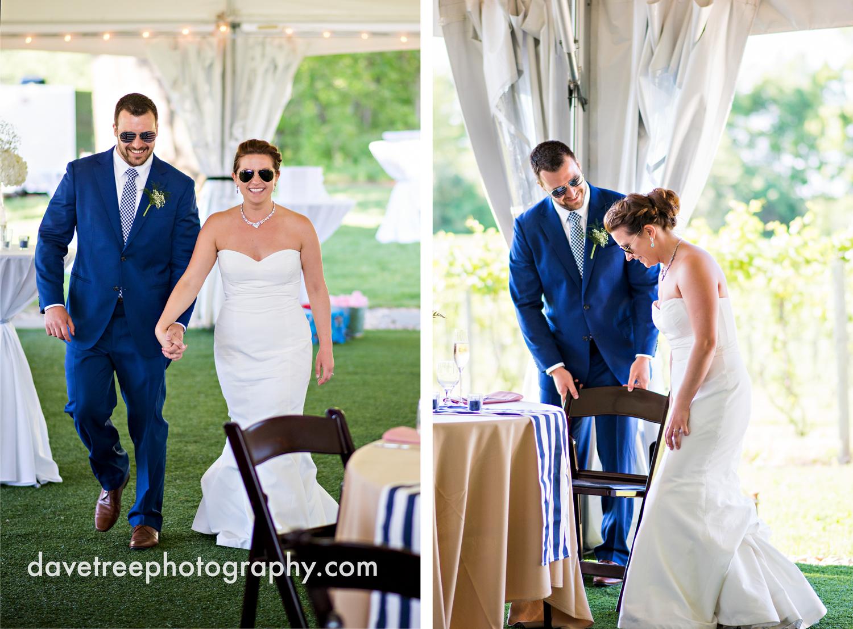 michigan_vineyard_wedding_photographer_davetree_photography_425.jpg