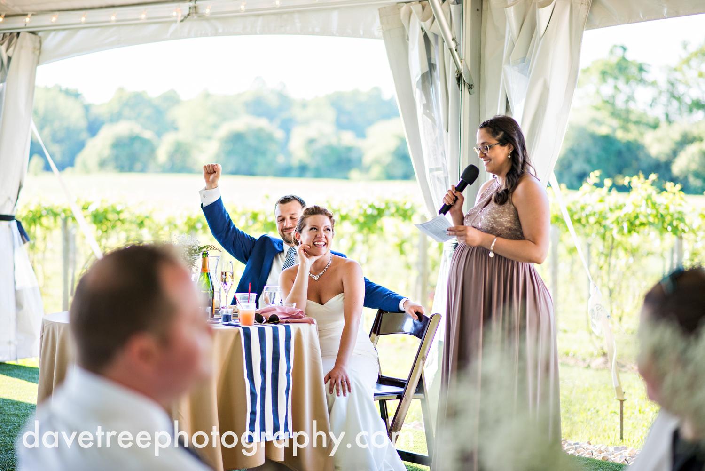 michigan_vineyard_wedding_photographer_davetree_photography_427.jpg