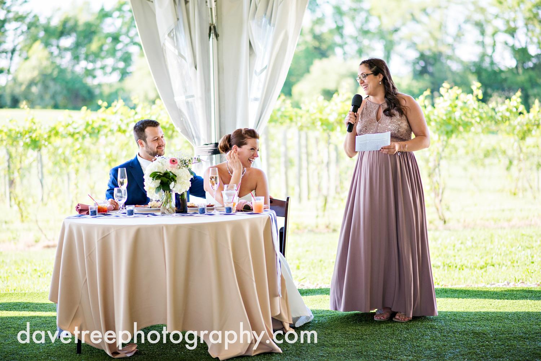michigan_vineyard_wedding_photographer_davetree_photography_426.jpg
