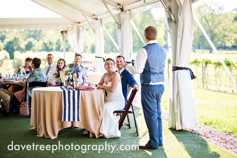 michigan_vineyard_wedding_photographer_davetree_photography_428.jpg
