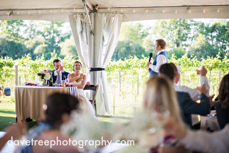 michigan_vineyard_wedding_photographer_davetree_photography_429.jpg