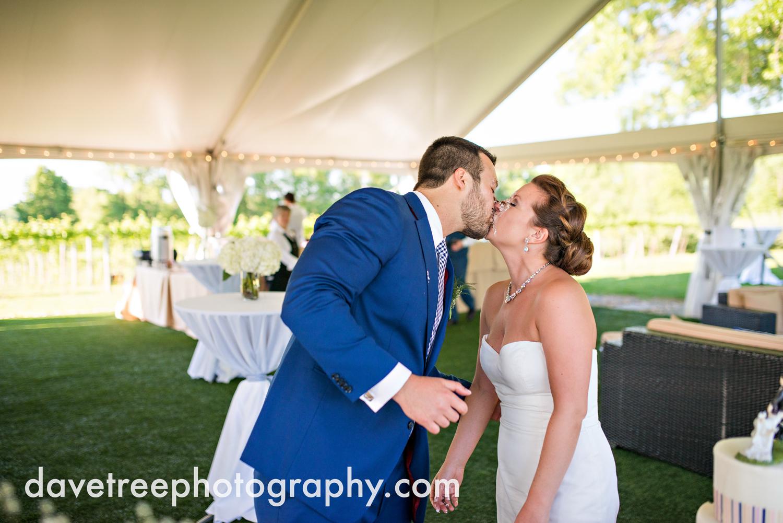 michigan_vineyard_wedding_photographer_davetree_photography_435.jpg
