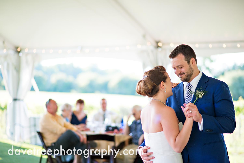 michigan_vineyard_wedding_photographer_davetree_photography_441.jpg