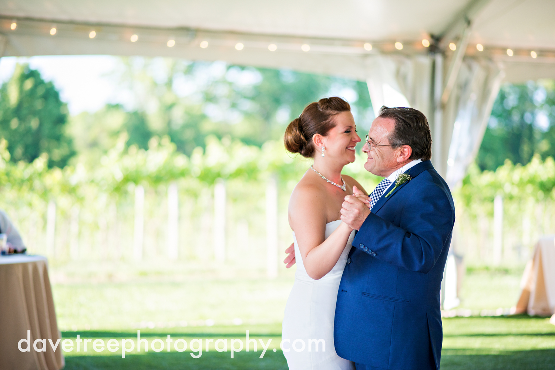 michigan_vineyard_wedding_photographer_davetree_photography_443.jpg