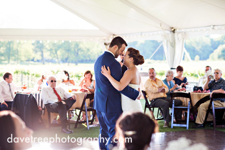 michigan_vineyard_wedding_photographer_davetree_photography_447.jpg