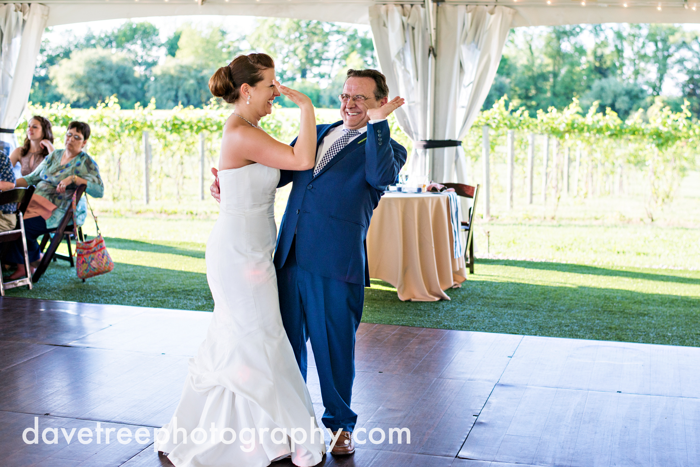 michigan_vineyard_wedding_photographer_davetree_photography_449.jpg