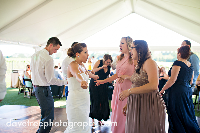 michigan_vineyard_wedding_photographer_davetree_photography_371.jpg