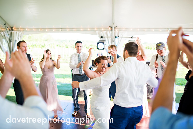michigan_vineyard_wedding_photographer_davetree_photography_375.jpg