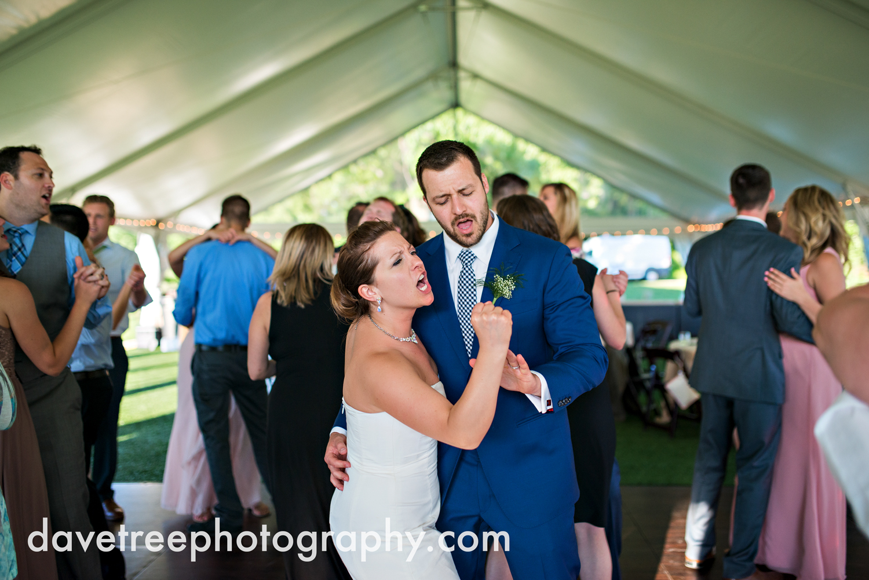michigan_vineyard_wedding_photographer_davetree_photography_377.jpg