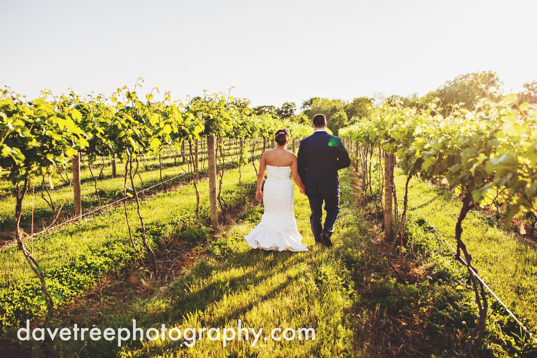 michigan_vineyard_wedding_photographer_davetree_photography_319.jpg